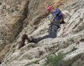 Dağda Mahsur Kalan Keçileri, AFAD Kurtardı
