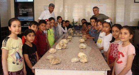 Öğrenciler, Fosiline Dokunarak Öğreniyor
